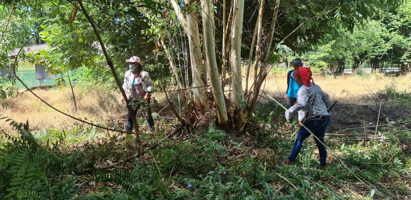 โรงเรียนวัดหนองปลิงร่วมกับชุมชนในการพัฒนาบริเวรของโรงเรียนให้มีความปลอดภัย